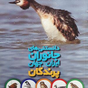 پرندگان - دانستنی های جانوران ایران و جهان