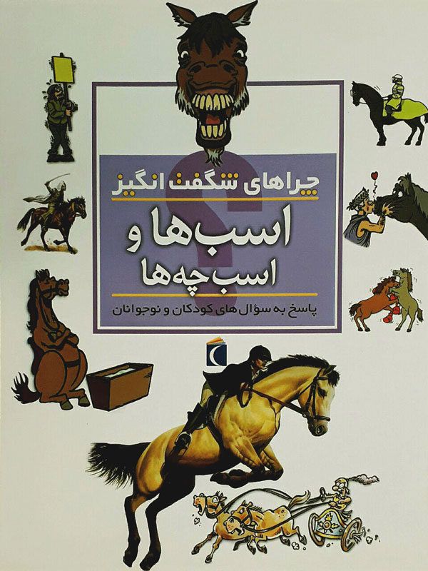 اسب ها و اسب چه ها - چراهای شگفت انگیز