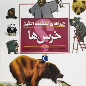 خرس ها - چراهای شگفت انگیز