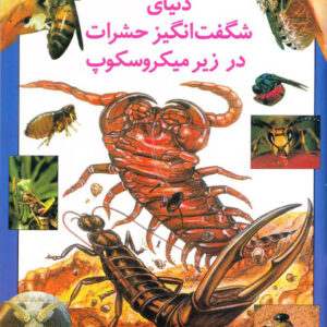 دنیای شگفت انگیز حشرات در زیر میکروسکوپ